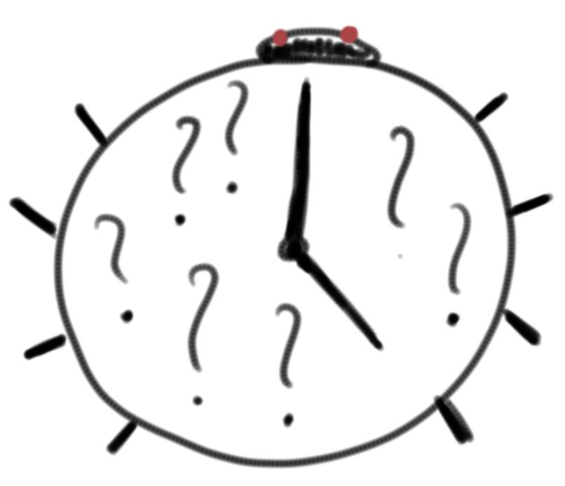time_bug
